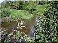 SJ6646 : River Weaver by Ian Bottomley