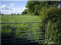 SJ6546 : Footpath taken from the lane to Coole Hall Farm by Ian Bottomley