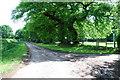 SJ8170 : Lane near Jones's Wood Withington by Ian Warburton