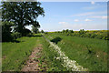 TF1306 : South Drain, Etton by Kate Jewell