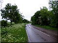 TL2665 : Barnfield Lane eastwards by Andrew Tatlow