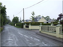 S8635 : Row of detached houses at Coolaught, Co. Wexford by Jonathan Billinger