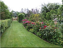 S8735 : Herbaceous border at Coolaught by Jonathan Billinger