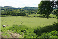 SX3488 : St Giles on the Heath: in the Tamar Valley by Martin Bodman