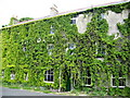 NY8355 : The Dale Hotel in summer plumage by Mike Quinn