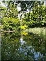 SU3899 : The Pond, Longworth Manor by Tim Kirby
