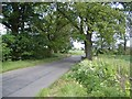TL1579 : Mile Brook Bridge East of Hamerton by Nigel Stickells