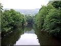 SK2958 : River Derwent by Donnylad