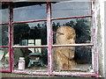 SM9630 : Head in window by ceridwen