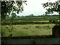 NY3460 : View towards Beaumont  showing series of hedges by Rose and Trev Clough