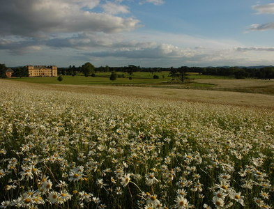 SO8844 : Croome Court and Park, Capability Brown's first commission by Philip Halling