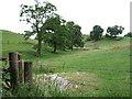 SJ8573 : Farmland near Henbury by Gethin Evans