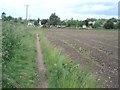 SO8973 : Crop field at Chaddesley Corbett by Trevor Rickard