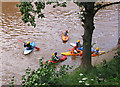SO5615 : A huddle of canoeists, Symonds Yat East by Pauline Eccles