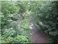 Dist:0.2km&lt;br/&gt;Becoming shrouded in dense summer vegetation this is the eastern end of the station, with both platforms visible. See [[474938]] in the adjacent grid square for details. This view was taken from the footbridge. There are comprehensive details of the station plus photographs of it when it was in use here http://www.subbrit.org.uk/sb-sites/stations/c/crouch_end/index.shtml