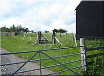 SS9288 : Farm gates and part of a shed by Ruth Sharville