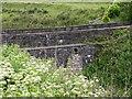 SD7219 : Grimehills Bridge by liz dawson