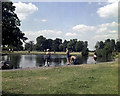 TQ2965 : Small pond in Beddington Park, Surrey by Dr Neil Clifton