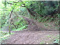 SO5009 : Forest road - footpath junction in Lydart Orles Wood by Roy Parkhouse