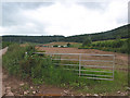 SO6121 : Open gate near Coleraine Farm by Pauline Eccles