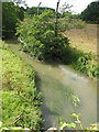 SP3518 : River Evenlode looking upstream from the bridge by Pauline E
