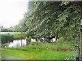 SJ7668 : Ornamental pond by David C Brown