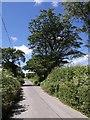 SX2794 : Lane to Week St Mary by Derek Harper