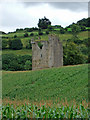 W4265 : Castles of Munster: Clodah, Cork by Mike Searle