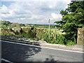 SD6711 : Footpath to Barrow Bridge by Alexander P Kapp