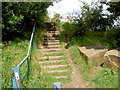 SE3804 : Steps on footpath. by Steve  Fareham