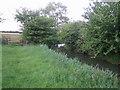 SP6727 : Padbury Brook near Three Bridge Mill by Andy Gryce