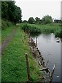 SO8660 : Droitwich Barge Canal by Trevor Rickard
