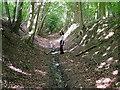 SP8907 : The Ridgeway in a ditch by Peter Jemmett