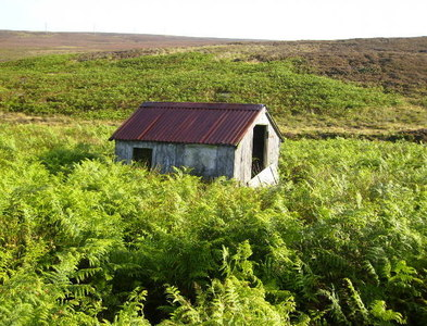 SE8698 : Old shed in moorland near Fylingdales by Phil Catterall