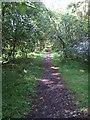 NO6896 : Old Deeside Railway track by Stanley Howe