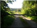SX0872 : Helligan Wood Entrance by William Bartlett