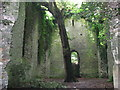 TG4819 : The ruin of St Mary's church, East Somerton by Evelyn Simak
