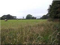 SN3445 : Hay field near Pen-lan by Jonathan Billinger