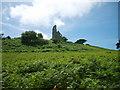SX4552 : The 'Folly' at Mount Edgecumbe by Tony Maguire