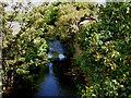 SE4003 : River Dove Low Valley. by Steve  Fareham