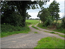 SJ7144 : Footpath near Wheel  Green by Peter Fleming