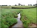 SJ6264 : Ash Brook near Pool Head Farm. by David Quinn