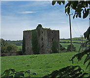 W4244 : Ballinoroher Castle by Mike Searle