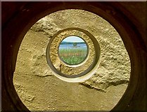 H0637 : Lough McNean by David Baird