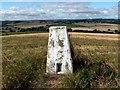 SE3008 : Barugh Hill Trig Pillar S4237 by John Fielding
