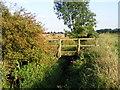 TL2357 : Abbotsley Brook by David Sands