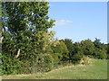 TL2258 : Caldecote Manor Farm by David Sands