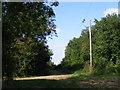 TL2156 : Gap in the trees near Eynesbury by David Sands