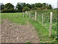 TF3264 : Field next to St Andrews graveyard, Miningsby by Dave Hitchborne