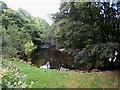 SJ0712 : River Vyrnwy below Dolanog by Oliver Dixon